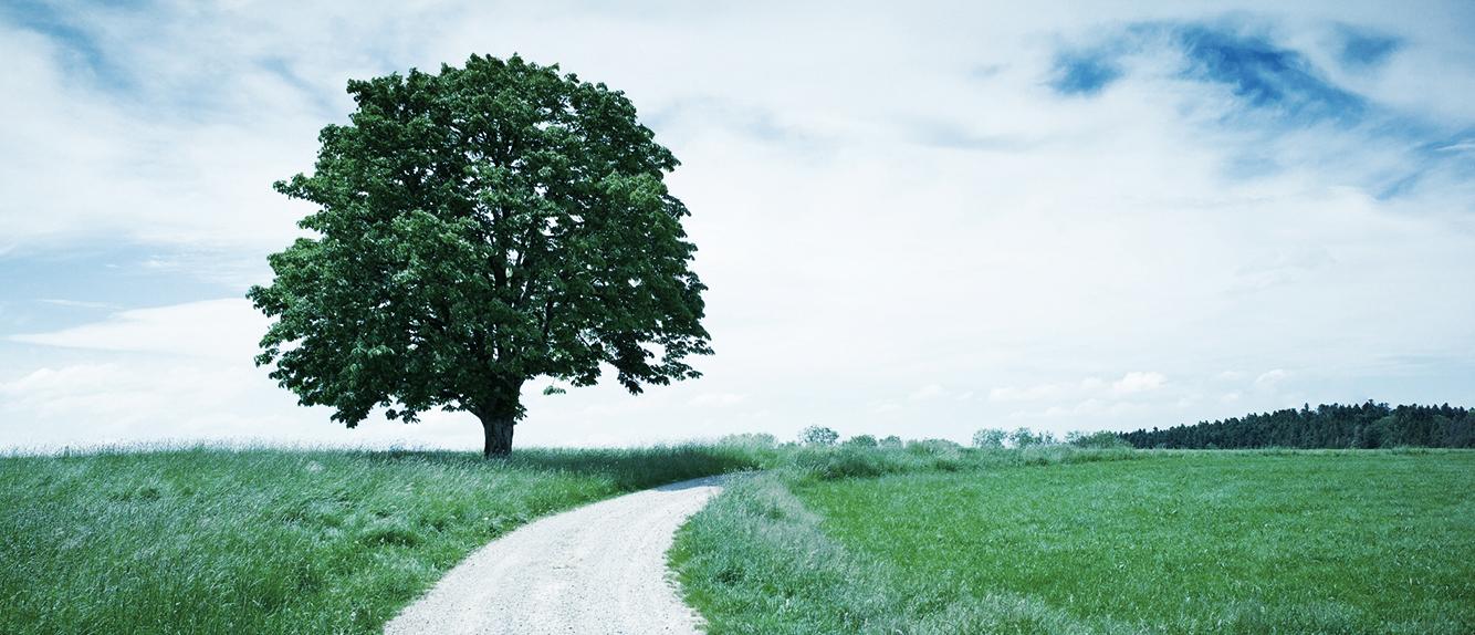 header_tree